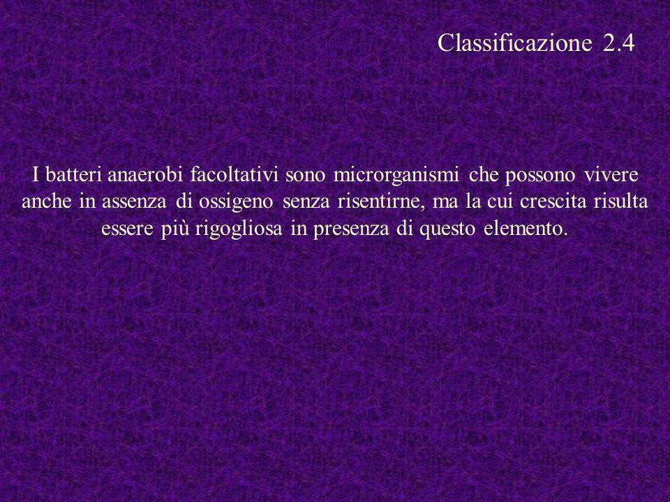 Classificazione 2.4