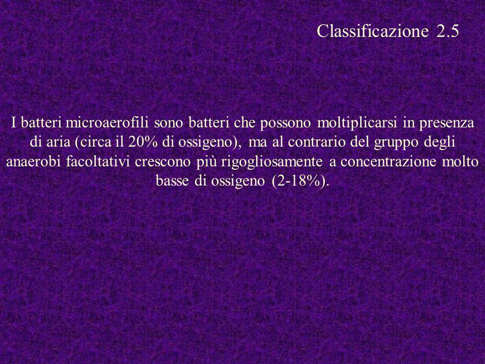 Classificazione 2.5