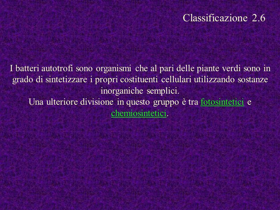 Classificazione 2.6