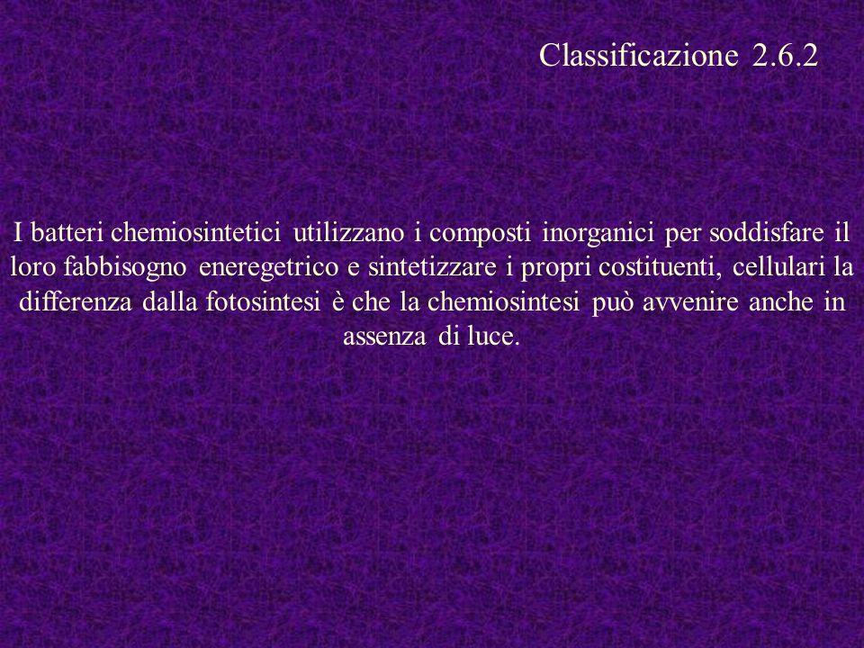Classificazione 2.6.2