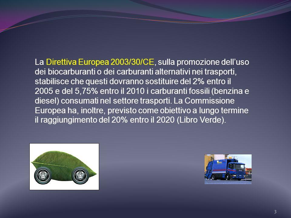 La Direttiva Europea 2003/30/CE, sulla promozione dell'uso dei biocarburanti o dei carburanti alternativi nei trasporti, stabilisce che questi dovranno sostituire del 2% entro il 2005 e del 5,75% entro il 2010 i carburanti fossili (benzina e diesel) consumati nel settore trasporti.