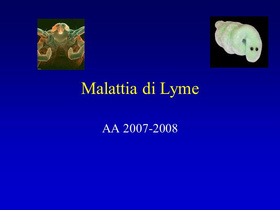 Malattia di Lyme AA 2007-2008