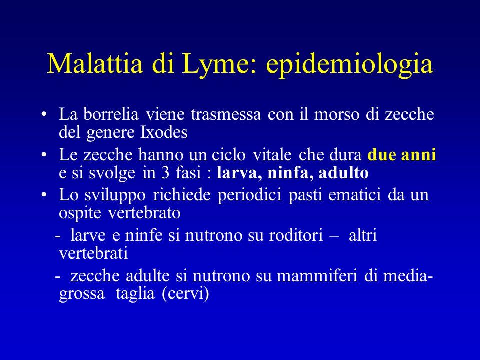 Malattia di Lyme: epidemiologia