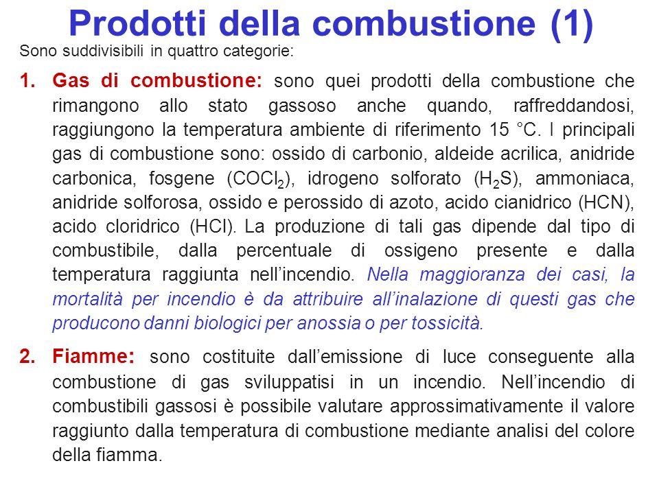 Prodotti della combustione (1)
