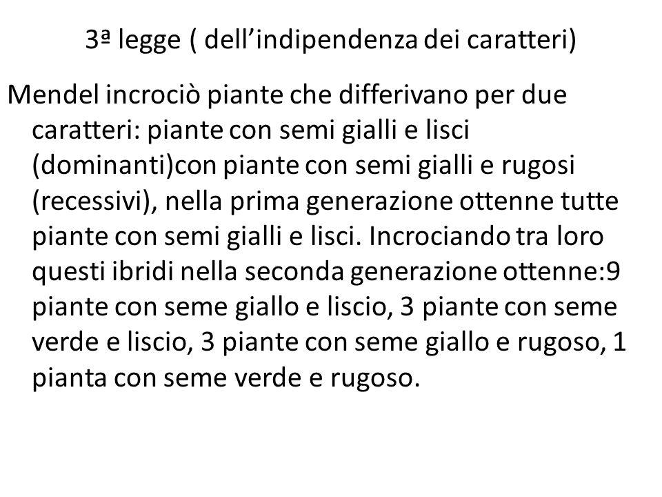 3ª legge ( dell'indipendenza dei caratteri)