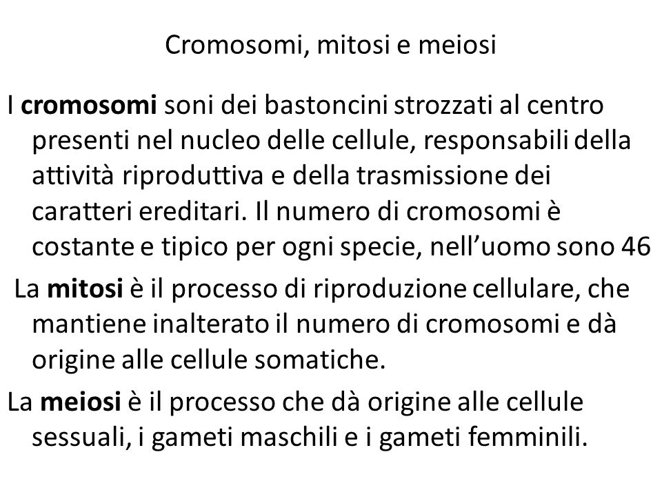 Cromosomi, mitosi e meiosi
