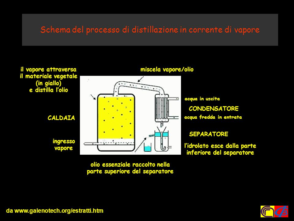Schema del processo di distillazione in corrente di vapore