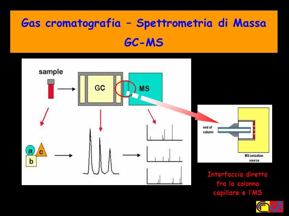Gas cromatografia – Spettrometria di Massa GC-MS