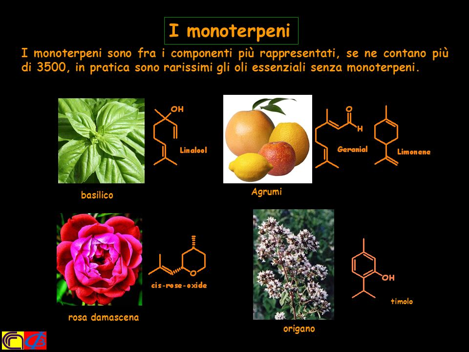 I monoterpeni
