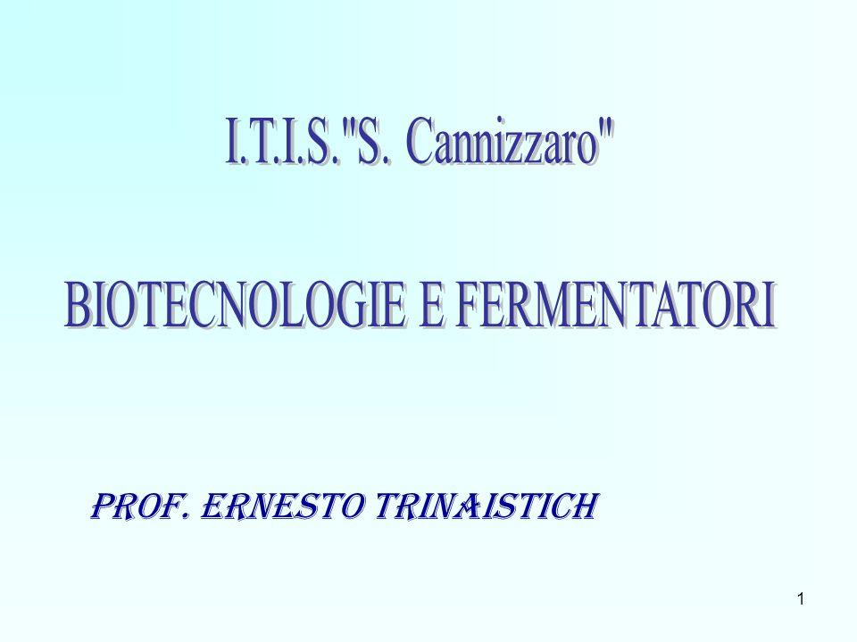 Prof. Ernesto Trinaistich