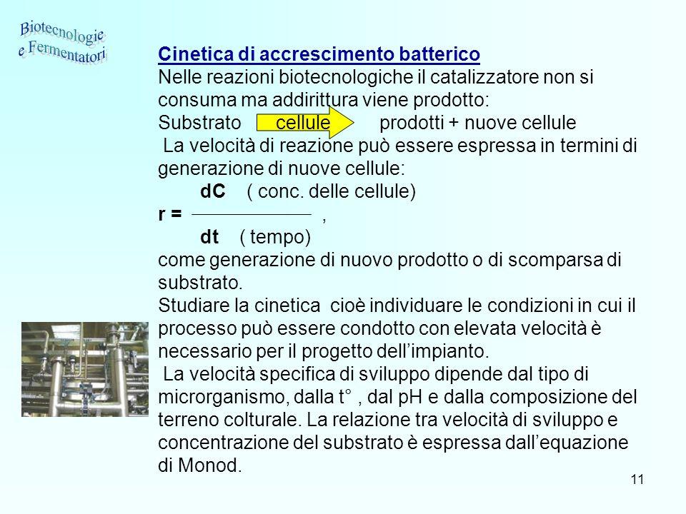 Biotecnologie e Fermentatori Cinetica di accrescimento batterico