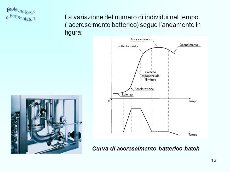 Biotecnologie e Fermentatori
