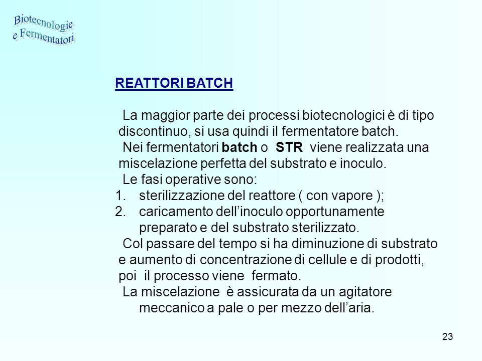 Biotecnologie e Fermentatori REATTORI BATCH