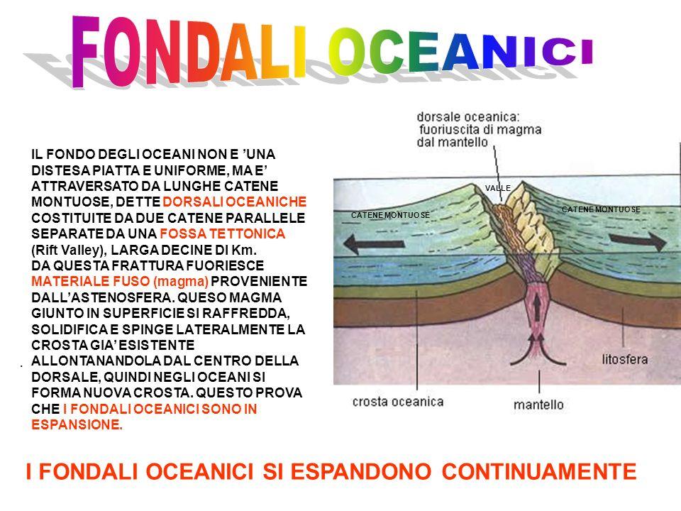 FONDALI OCEANICI I FONDALI OCEANICI SI ESPANDONO CONTINUAMENTE