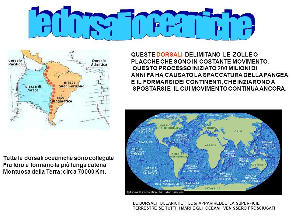 le dorsali oceaniche QUESTE DORSALI DELIMITANO LE ZOLLE O