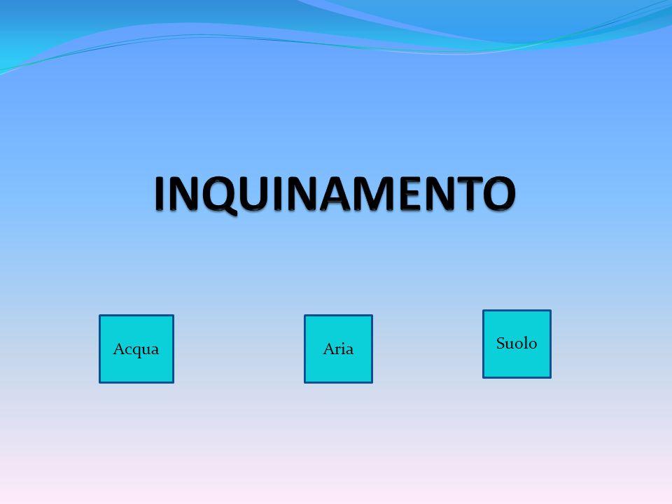 INQUINAMENTO Suolo Acqua Aria