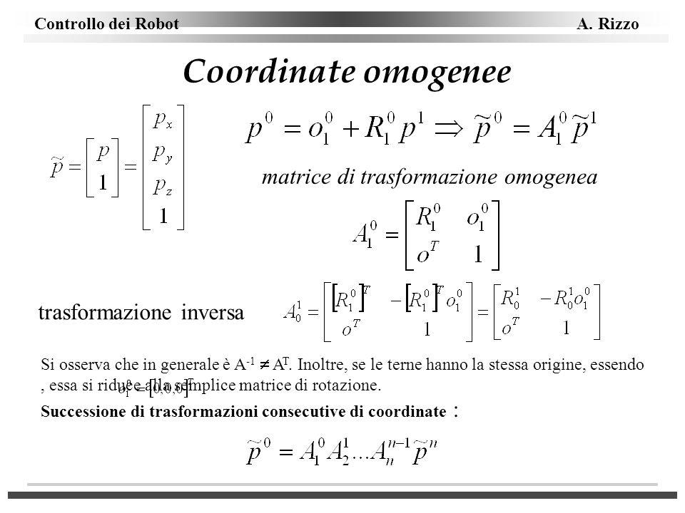 Coordinate omogenee matrice di trasformazione omogenea