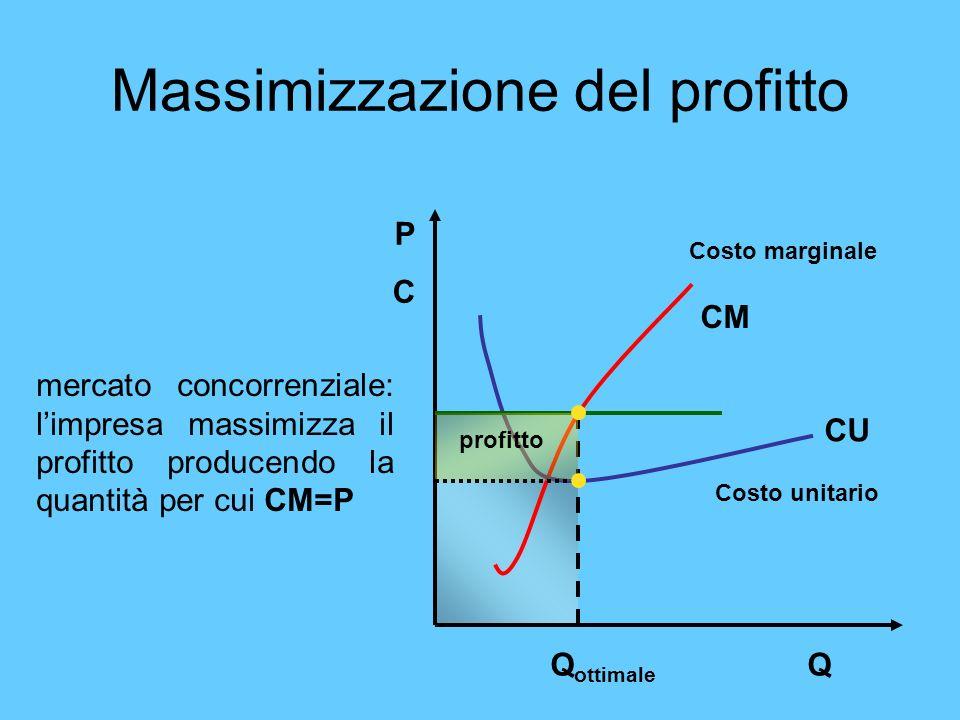 Massimizzazione del profitto