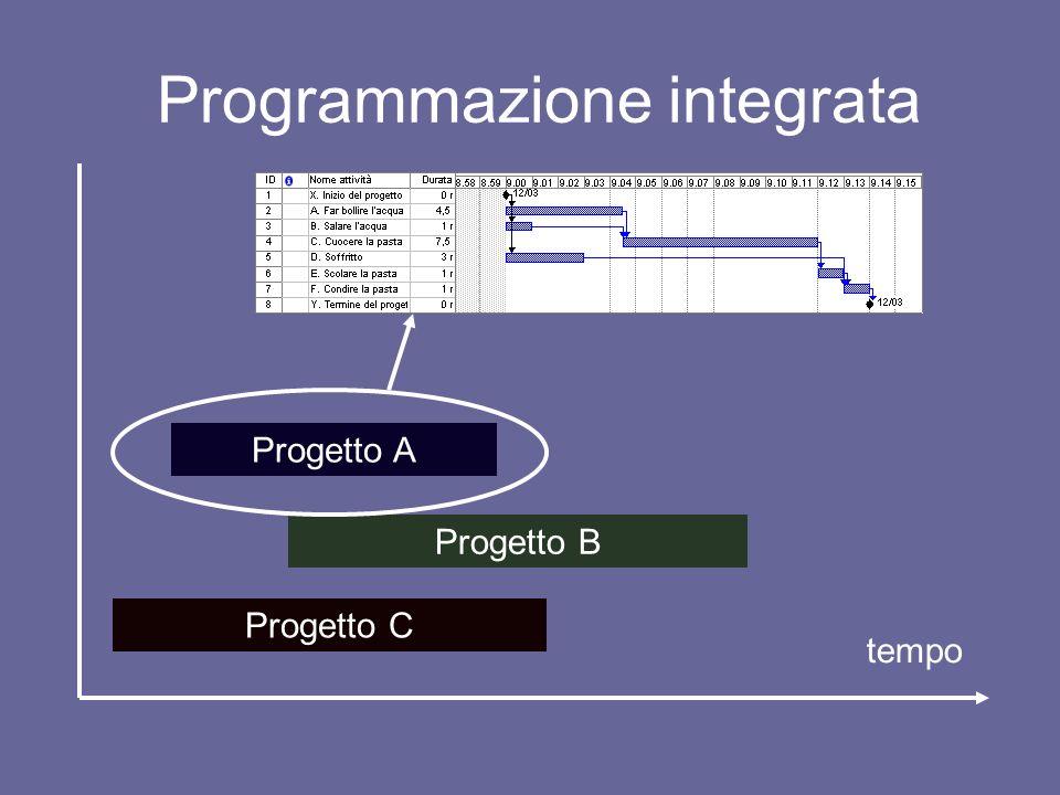 Programmazione integrata