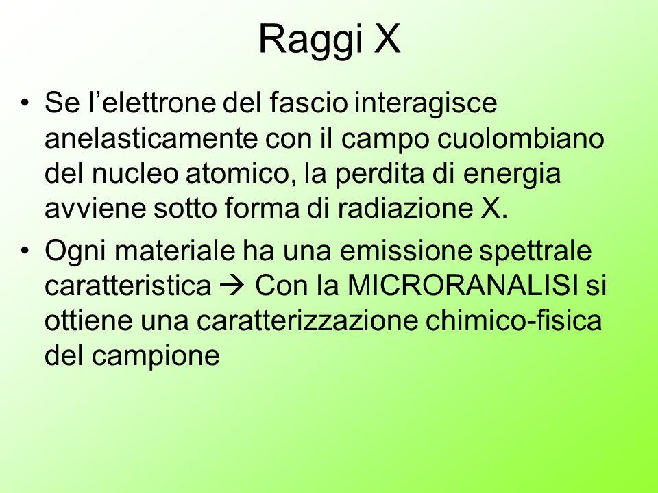 Raggi X