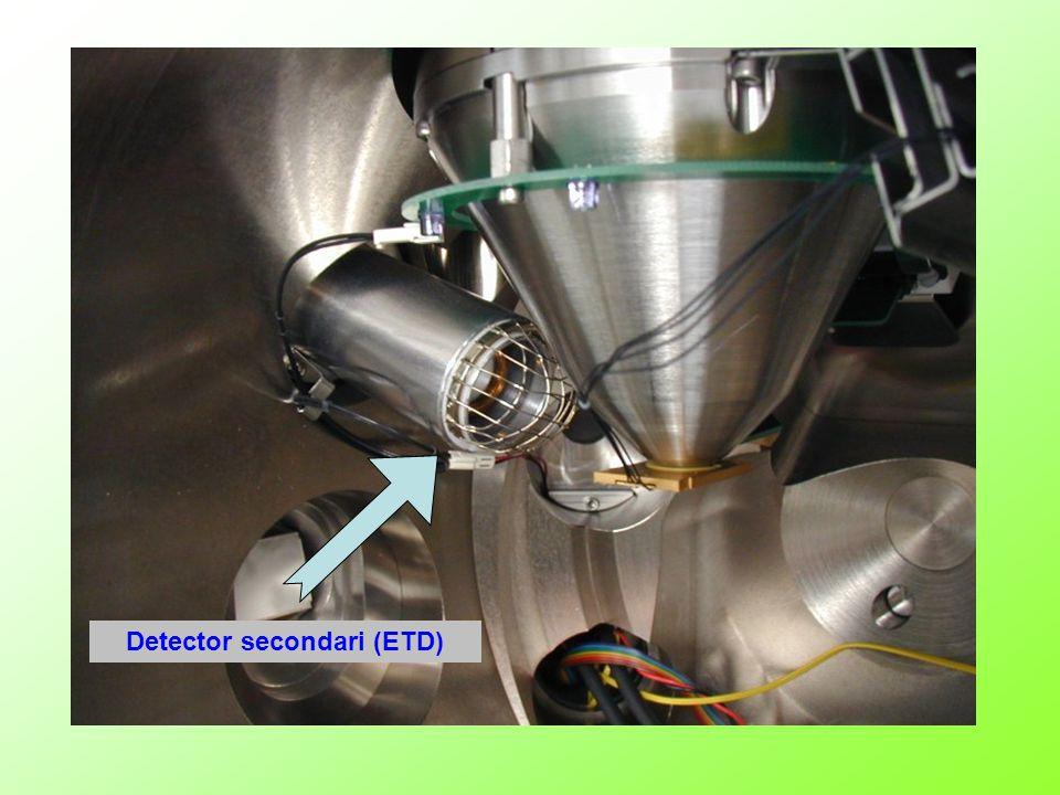 Detector secondari (ETD)