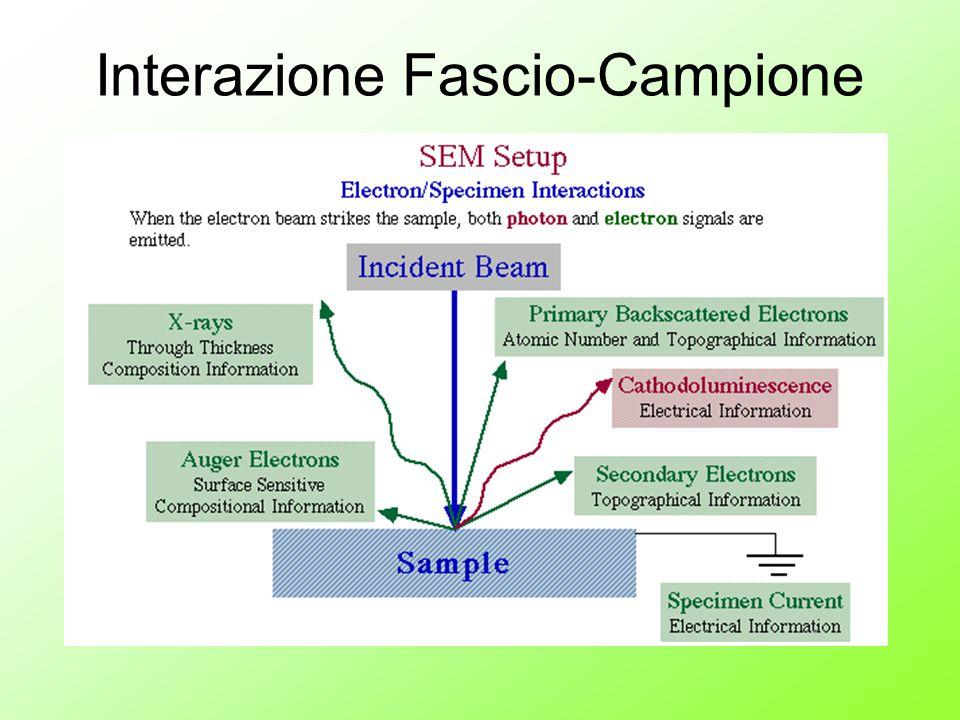 Interazione Fascio-Campione
