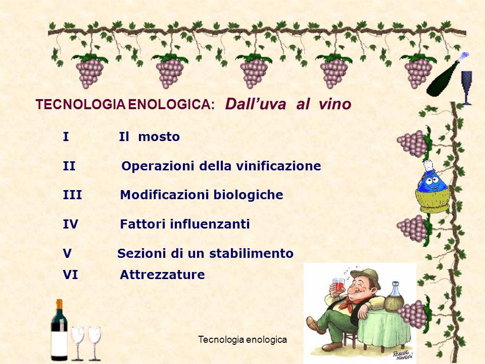 TECNOLOGIA ENOLOGICA: Dall'uva al vino