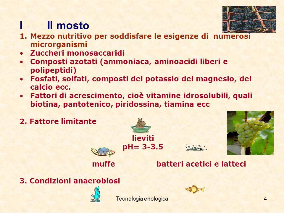 I Il mosto Mezzo nutritivo per soddisfare le esigenze di numerosi microrganismi. Zuccheri monosaccaridi.
