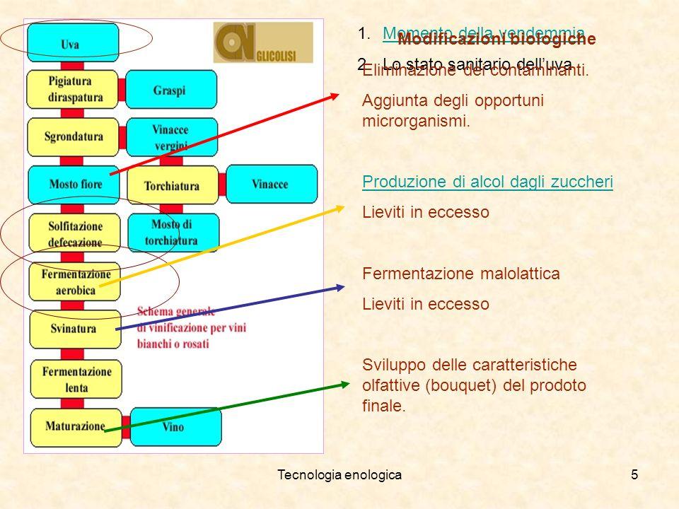 Modificazioni biologiche