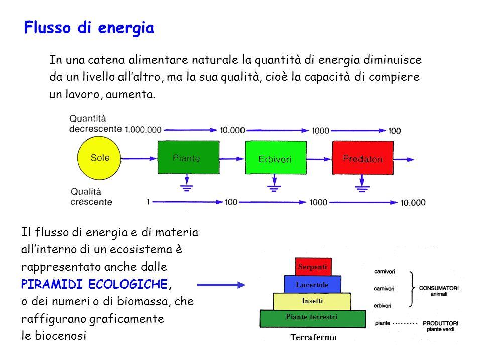Flusso di energia