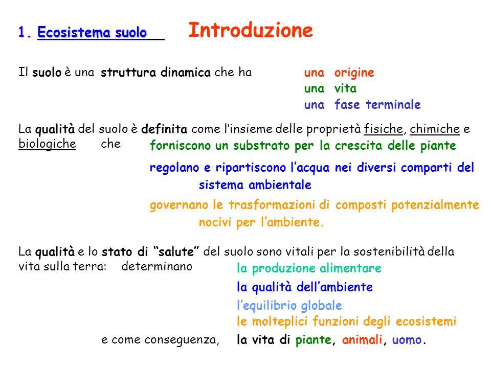 1. Ecosistema suolo Introduzione