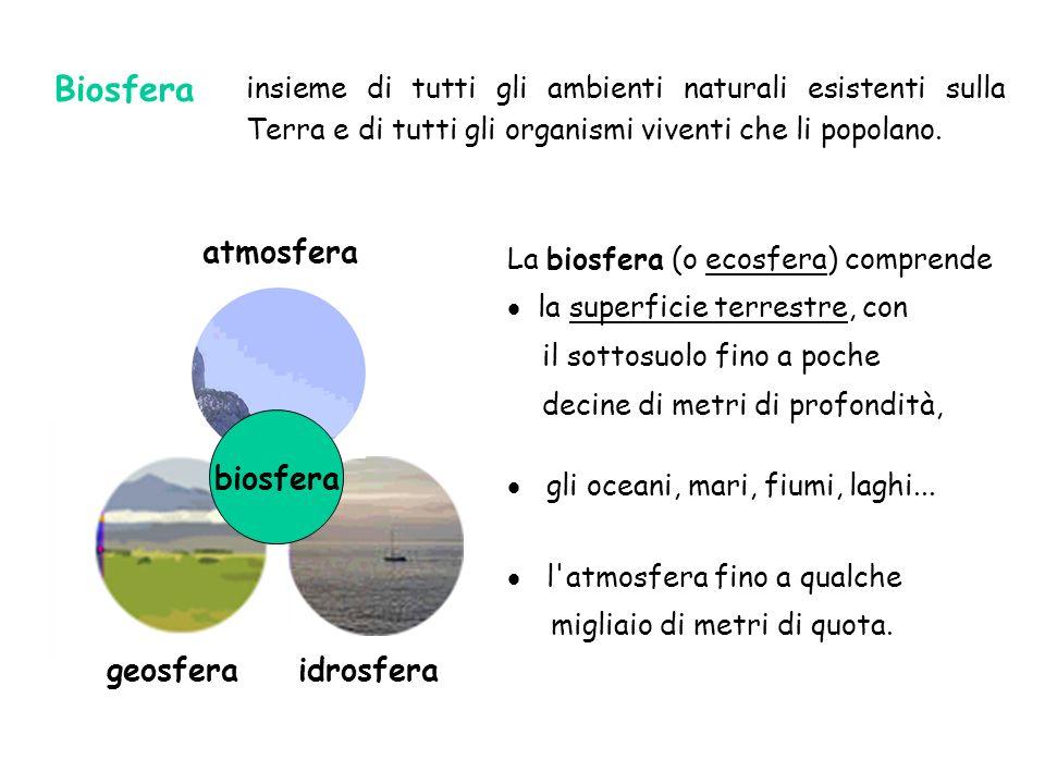 Biosfera atmosfera biosfera geosfera idrosfera
