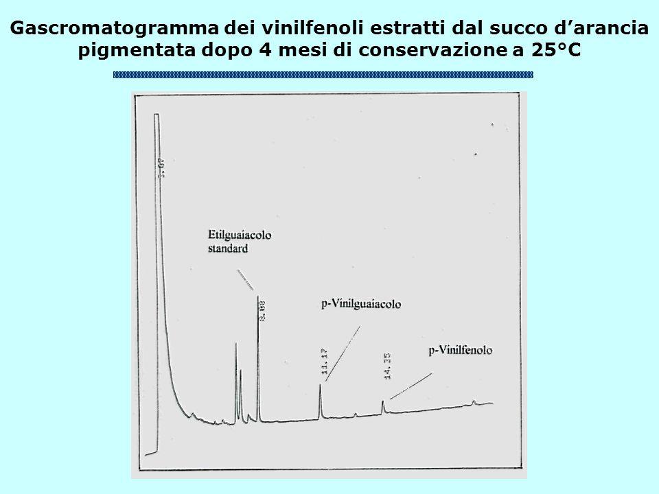 Gascromatogramma dei vinilfenoli estratti dal succo d'arancia pigmentata dopo 4 mesi di conservazione a 25°C