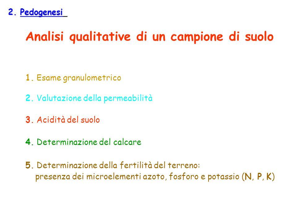 Analisi qualitative di un campione di suolo