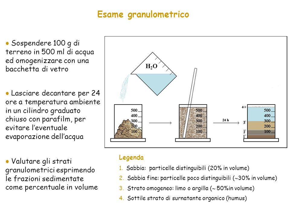 Esame granulometrico  Sospendere 100 g di terreno in 500 ml di acqua ed omogenizzare con una bacchetta di vetro.