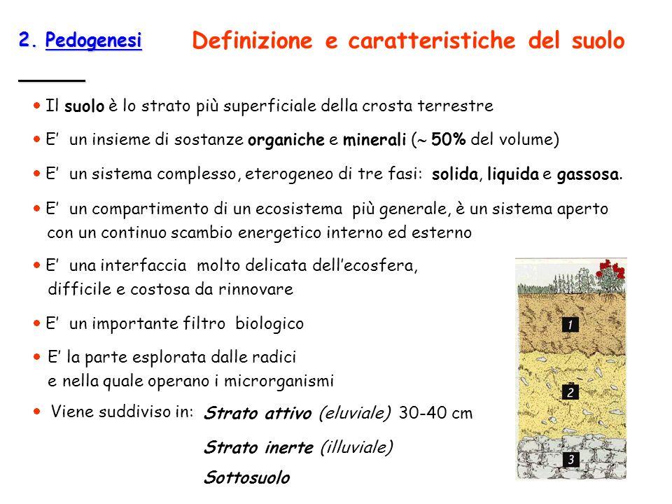 Definizione e caratteristiche del suolo
