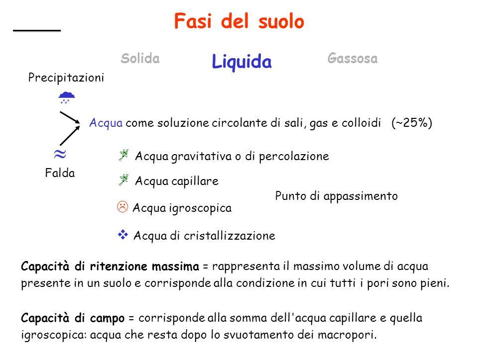  Falda Liquida Fasi del suolo Solida Gassosa Precipitazioni