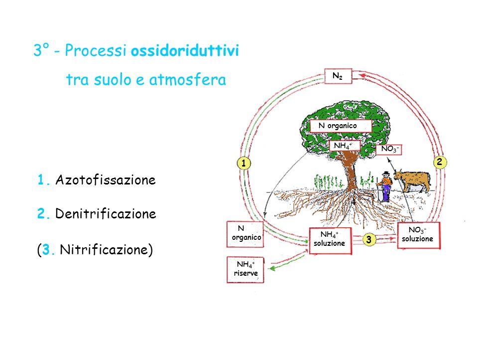 3° - Processi ossidoriduttivi tra suolo e atmosfera