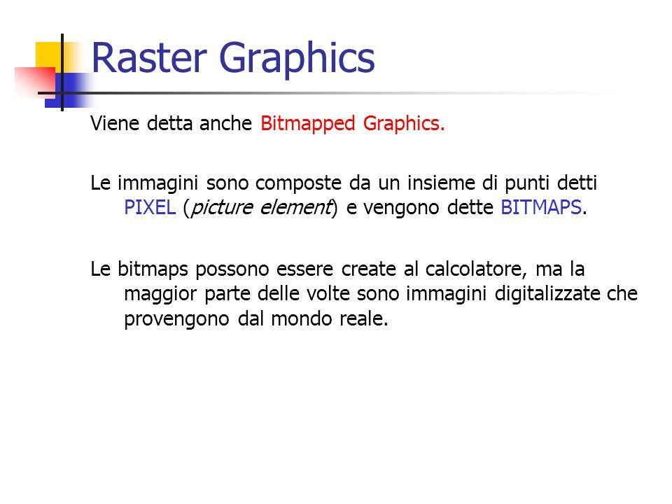 Raster Graphics Viene detta anche Bitmapped Graphics.