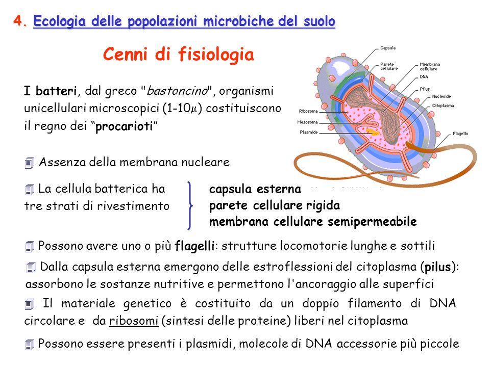 Cenni di fisiologia 4. Ecologia delle popolazioni microbiche del suolo