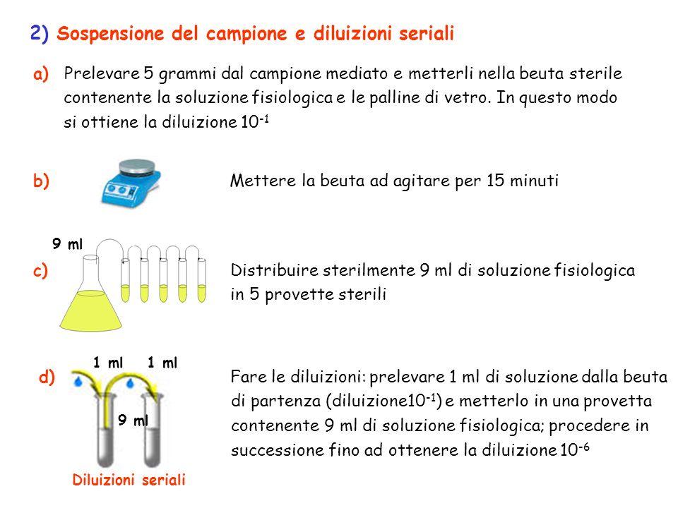 2) Sospensione del campione e diluizioni seriali