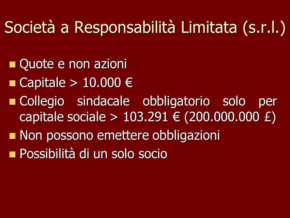 Società a Responsabilità Limitata (s.r.l.)