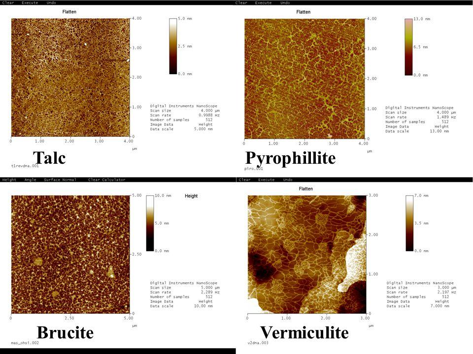 Talc Pyrophillite Brucite Vermiculite