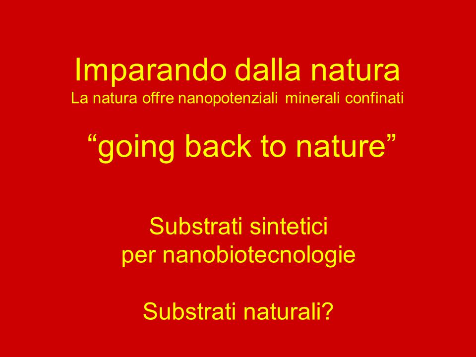 Imparando dalla natura going back to nature