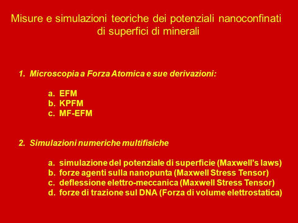 Misure e simulazioni teoriche dei potenziali nanoconfinati