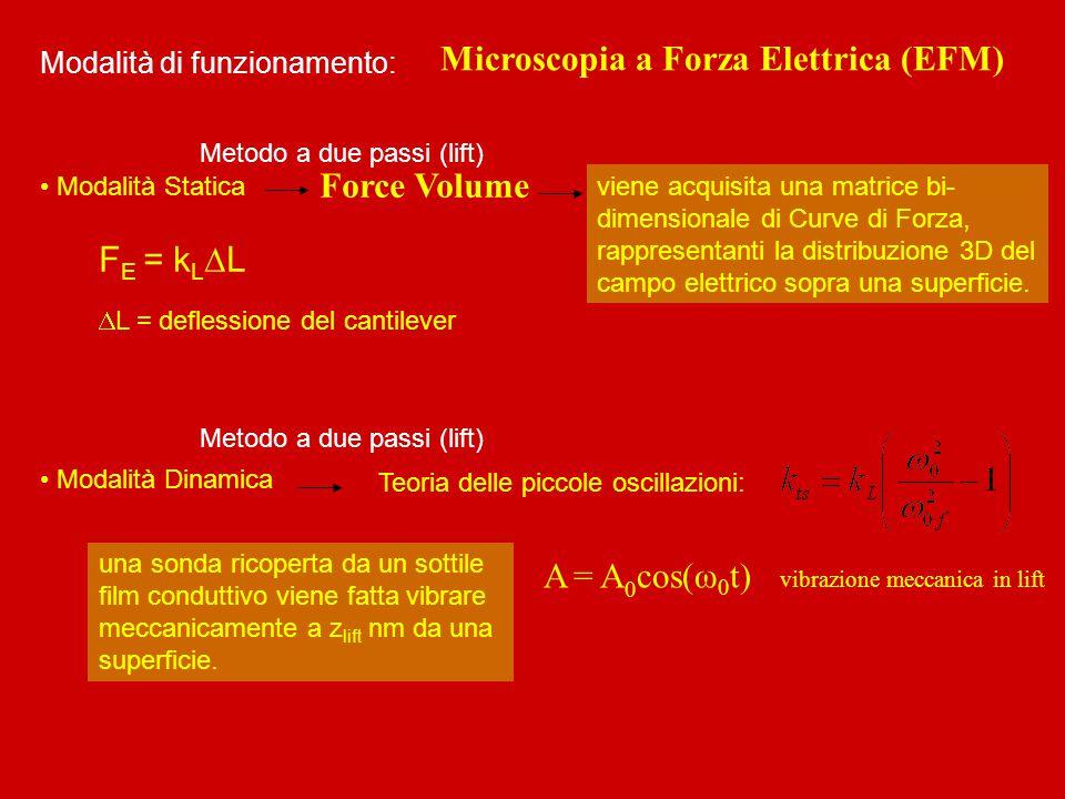 Microscopia a Forza Elettrica (EFM)