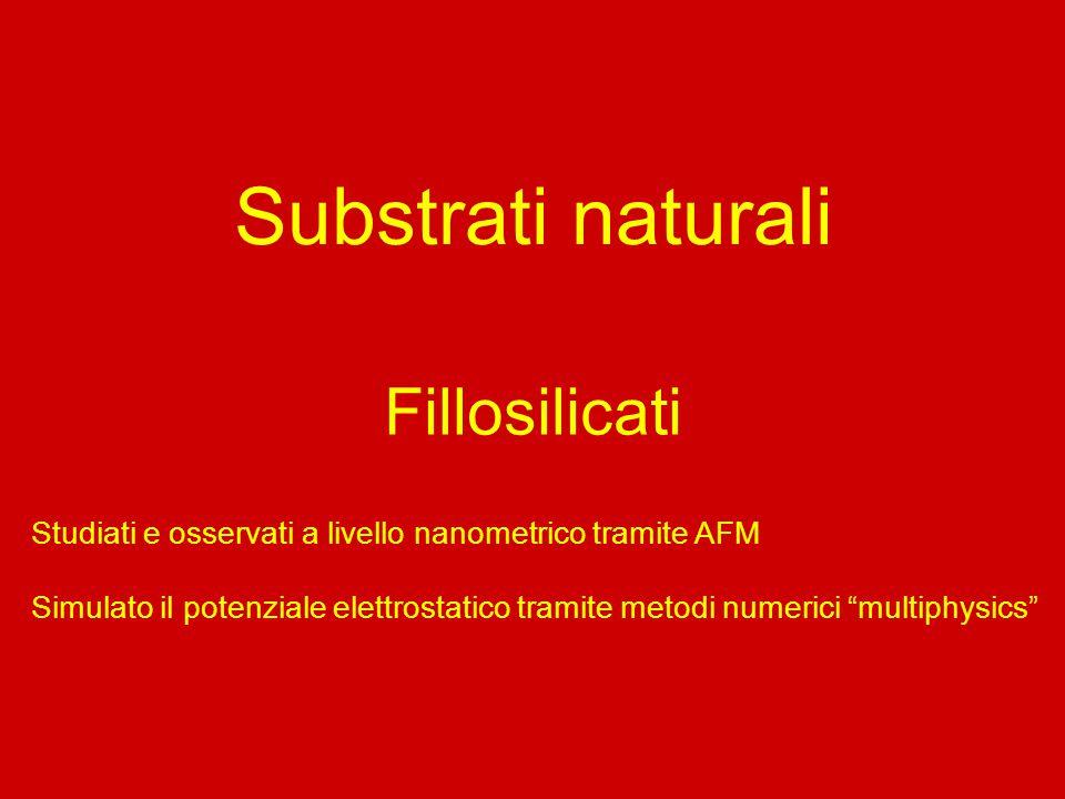 Substrati naturali Fillosilicati