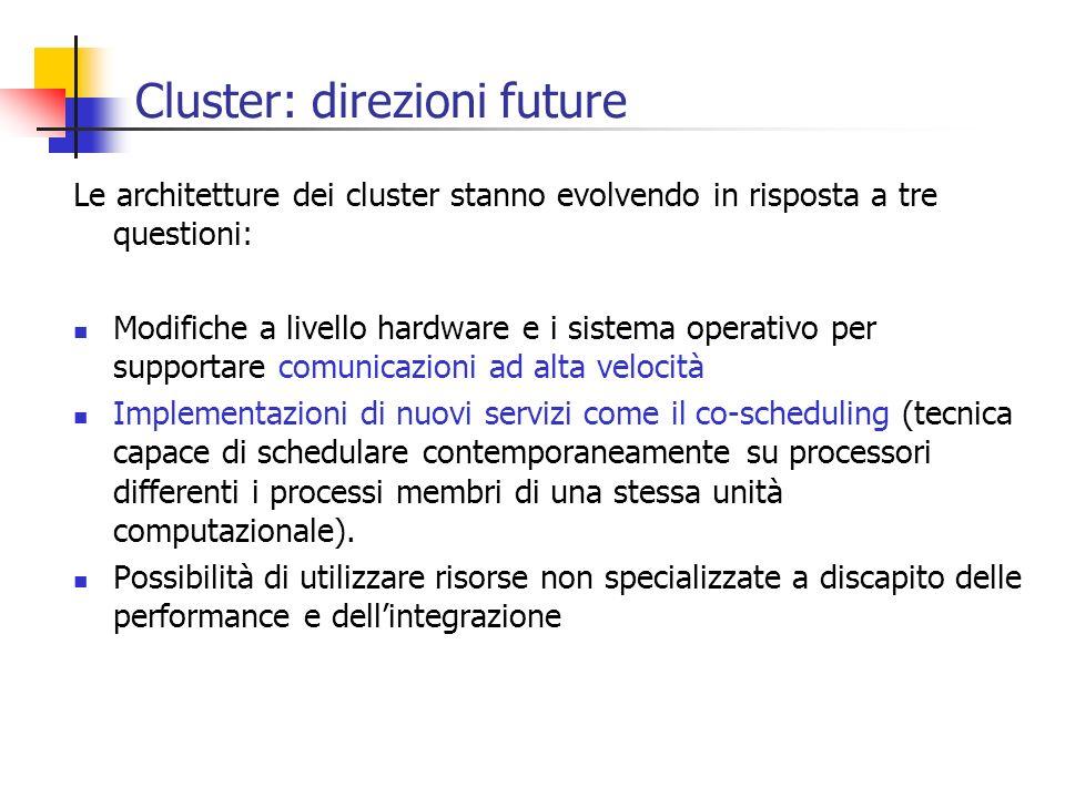 Cluster: direzioni future