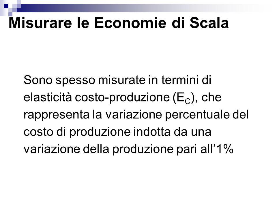 Misurare le Economie di Scala