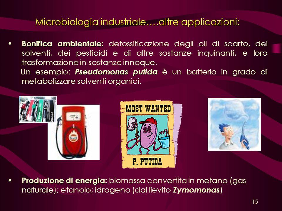 Microbiologia industriale….altre applicazioni: